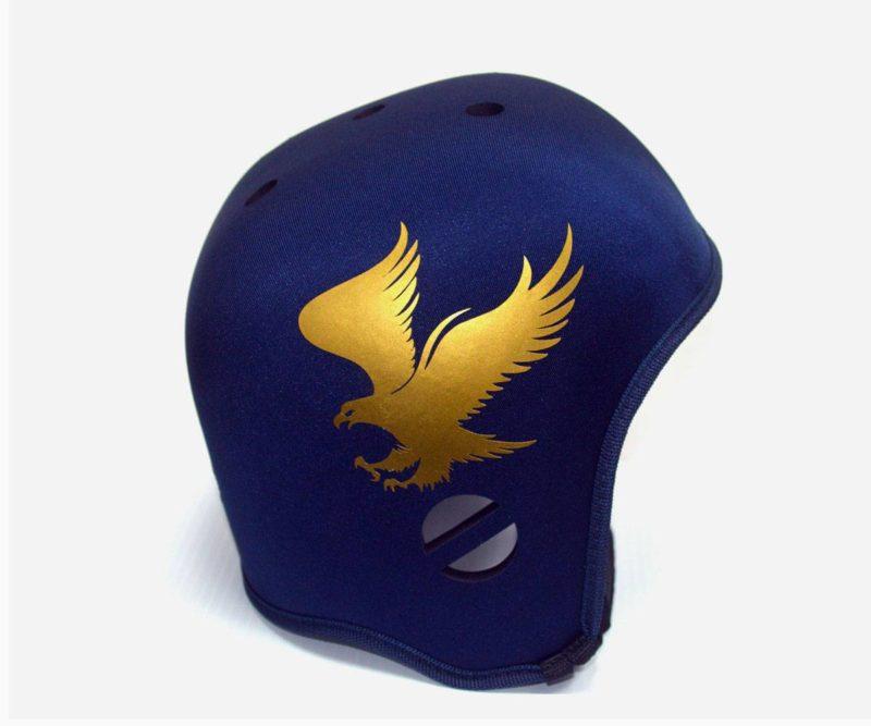 Bald Eagle Graphic